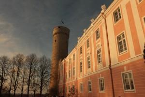 Tallinn 11